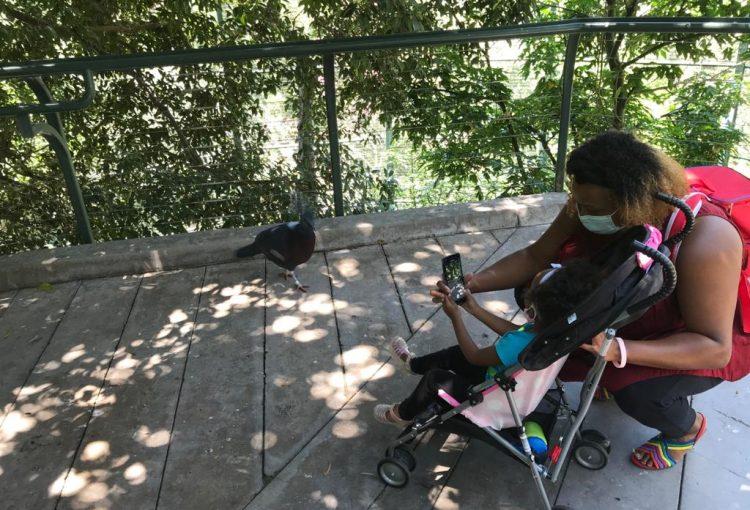 Must See Saturday's at San Diego Zoo & Safari