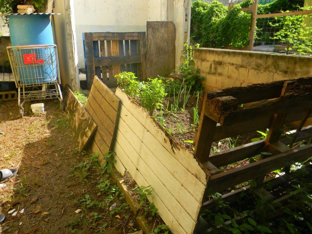 Seedling Source, Garden Area