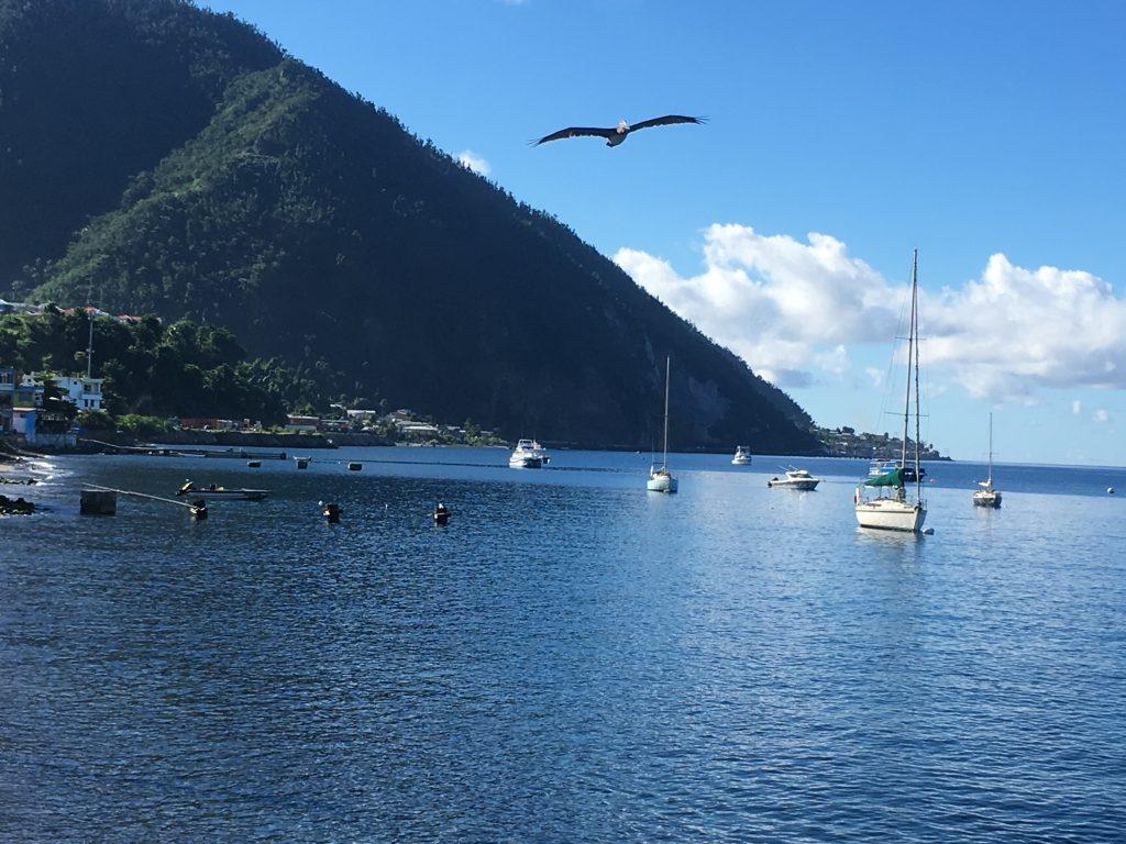 Top 3 Caribbean Escape, Dominica