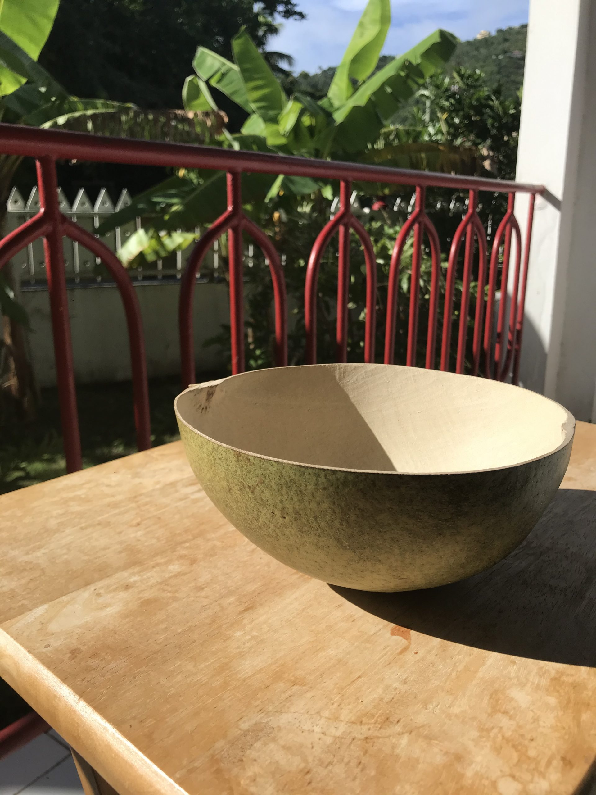 Calabash Bowls and Red Mangroves; Photos from Tortola